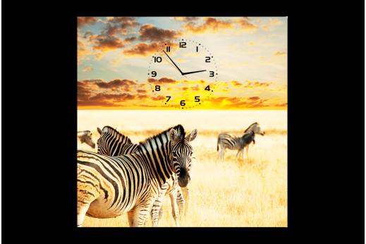 Картина-часы Зебры