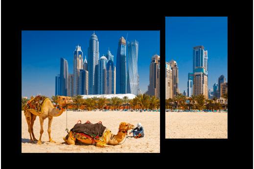 Модульная картина Верблюды на фоне высоток